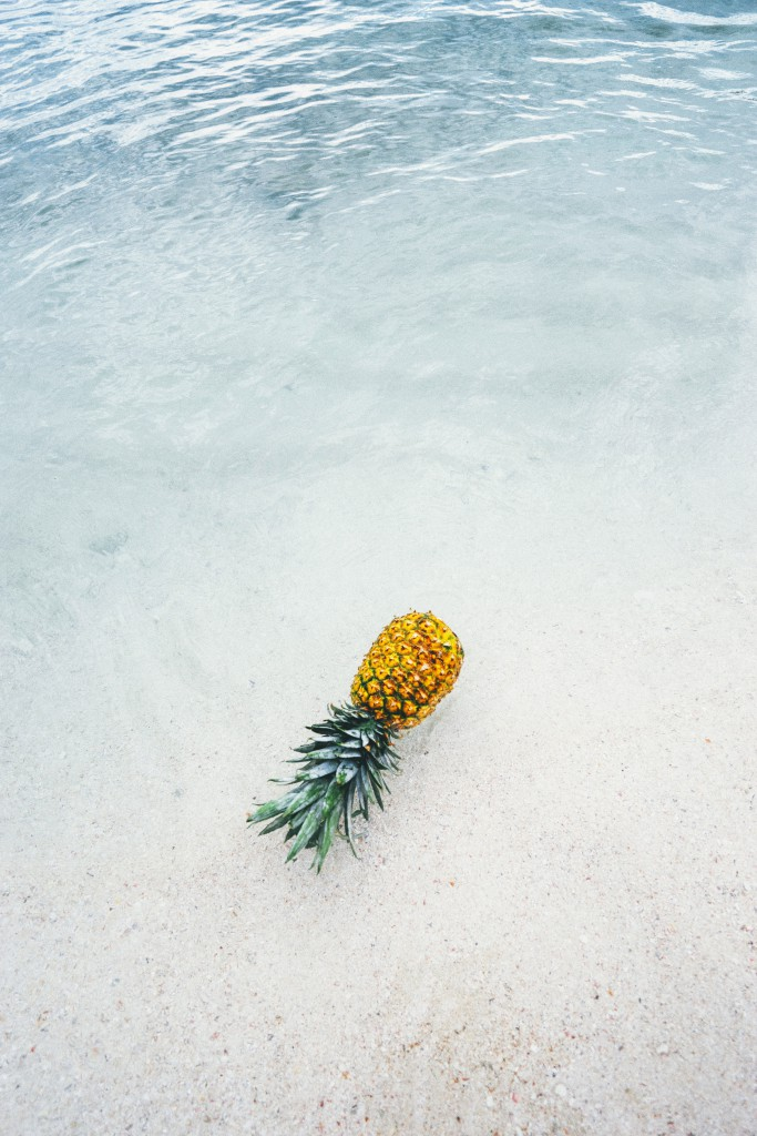 pineapple-supply-co-244468-unsplash (1)